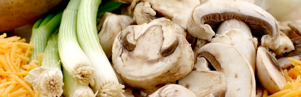From farm to table, Fitz Fresh produces the highest quality mushrooms, a healthy food you can feel good about enjoying.